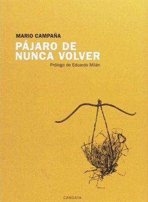 PAJARO DE NUNCA VOLVER